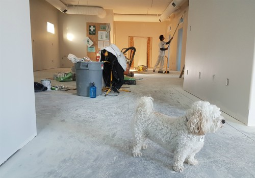 managing-your-home-improvement-project.jpg